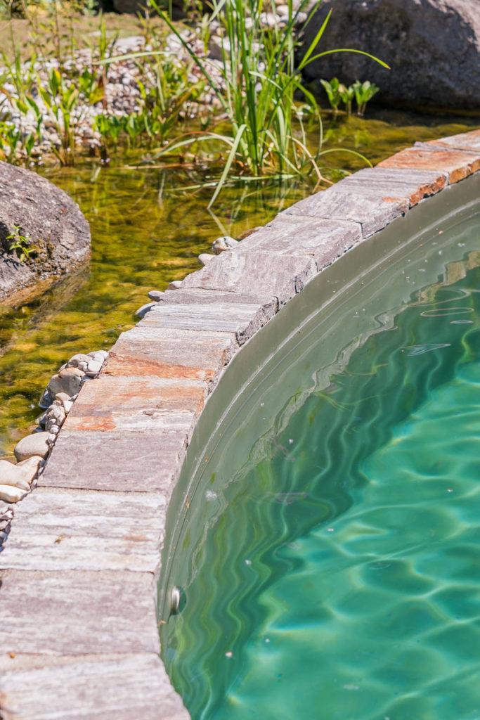 FREIRAUM abgetrennter Wasserpflanzenbereich
