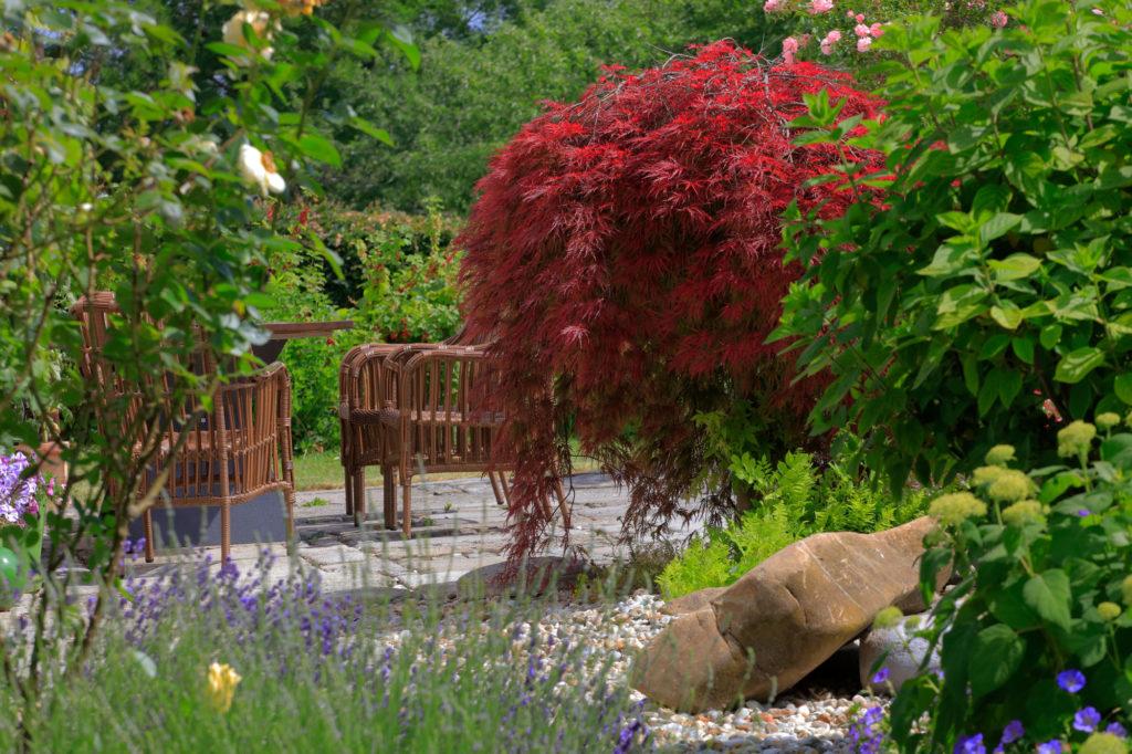 FREIRAUM Sitzgelegenheit mit Pflanzen
