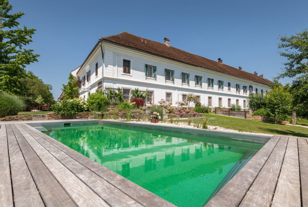 FREIRAUM Pool mit Holzdeck IPE