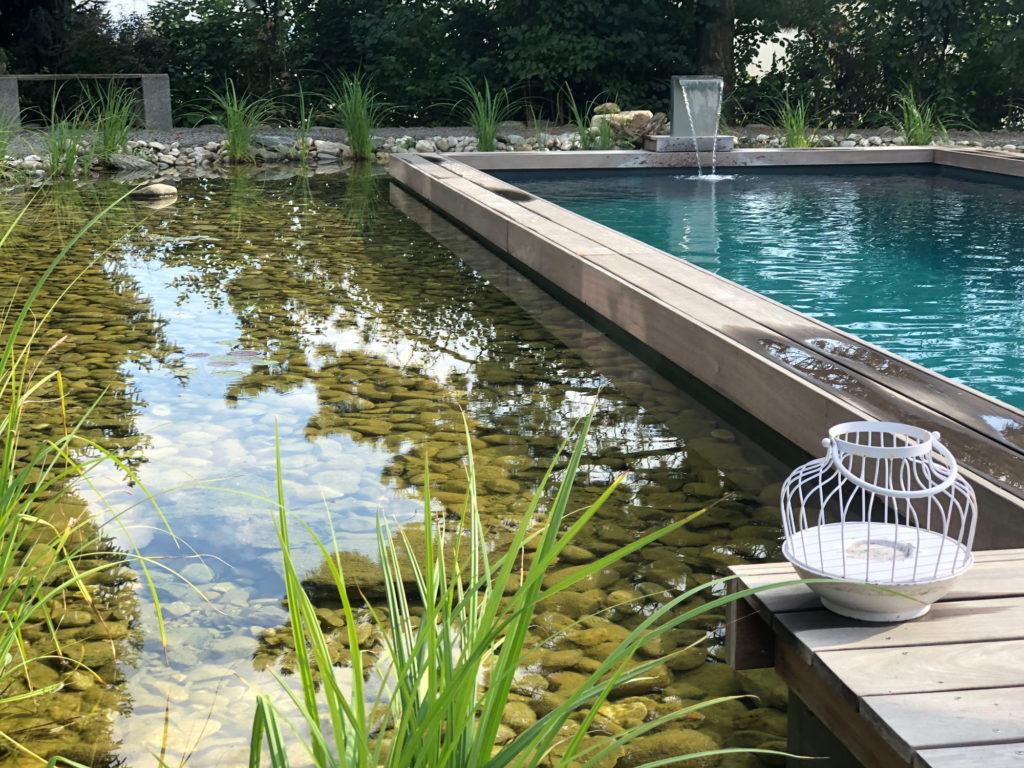 FREIRAUM Living Pool mit Wasserpflanzenbereich