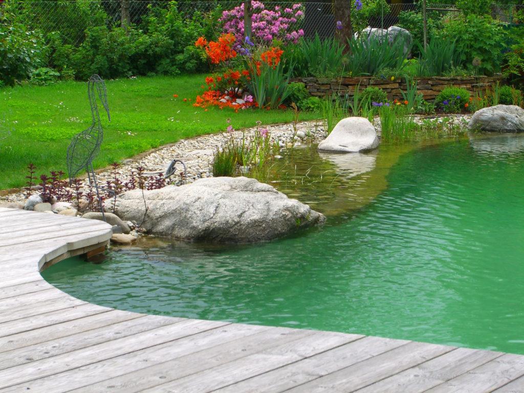 FREIRAUM Swimming Pond mit Wasserpflanzenbereich