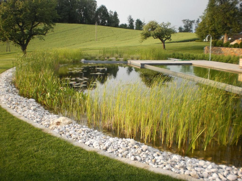 FREIRAUM Swimming Pond mit Pflanzbereich
