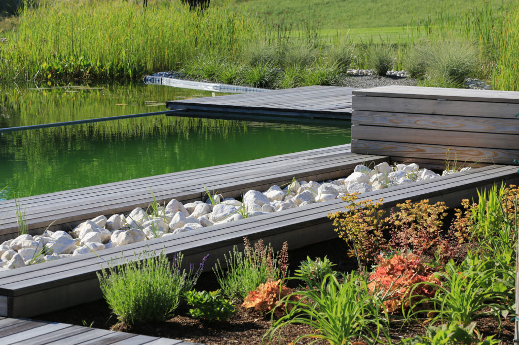 FREIRAUM Swimming Pond Pflanzbereiche